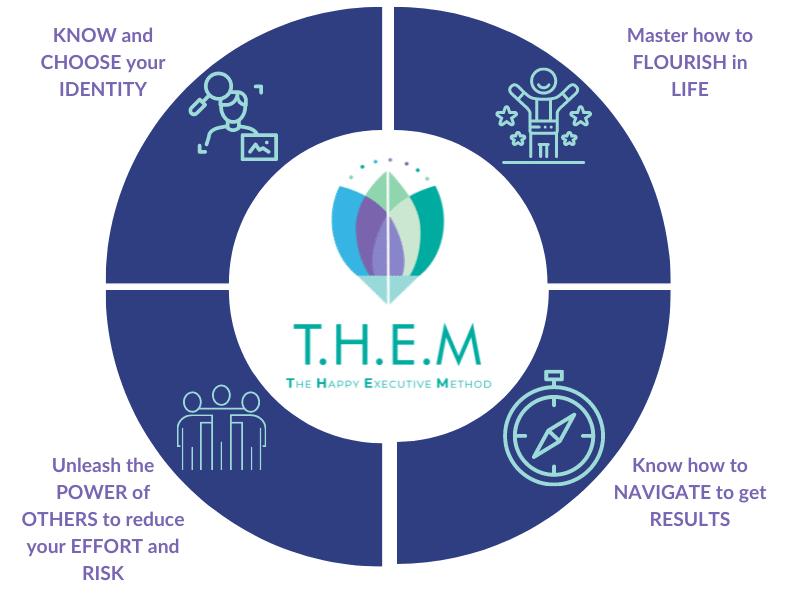 Description of T.H.E.M.